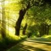 Um viagem espiritual. Arte de Viver – Curso Yes Plus Salvador de 31 de outubro a 05 de novembro
