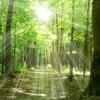 Um viagem espiritual. Arte de Viver – Curso Yes Plus Salvador